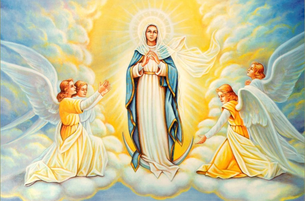 15 AUGUST: REFLECTIONS ON THE MYSTERY OF ASSUMPTION
